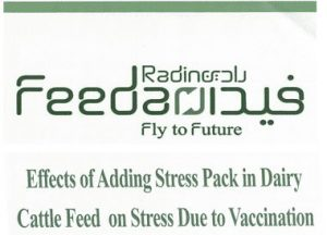 Effect of Adding Stress Pack in Dairy Cattle